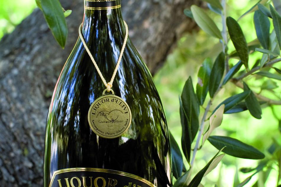 www.olivoeolio.it/