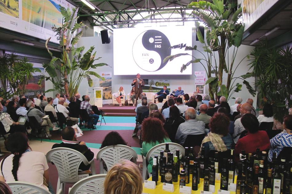 www.olivoeolio.it