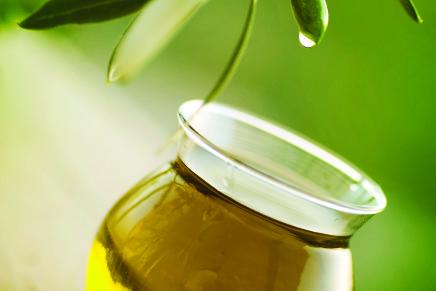 Una rete di Fondazioni investe in olivicoltura