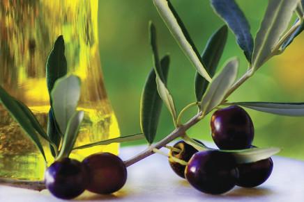Consistenza e mercato dell'olivicoltura biologica