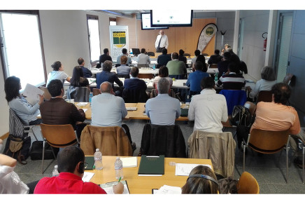 Alta qualificazione per la filiera olivicola-olearia: un corso a settembre
