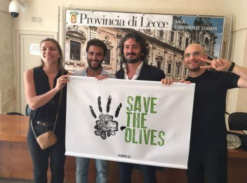 save the olives contro la xylella fastidiosa