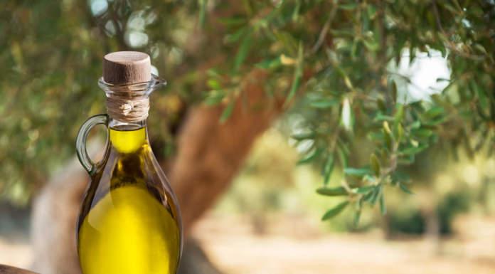 residui di clorpirifos nell'olio