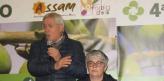 tavora rotonda su xylella a nova agricoltura in oliveto 2019