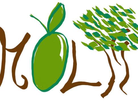 olivicoltura italiana progetto molti