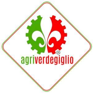 Agriverdegiglio logo