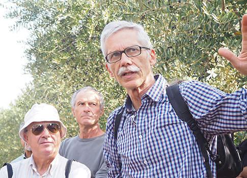 olivicoltura multifunzionale