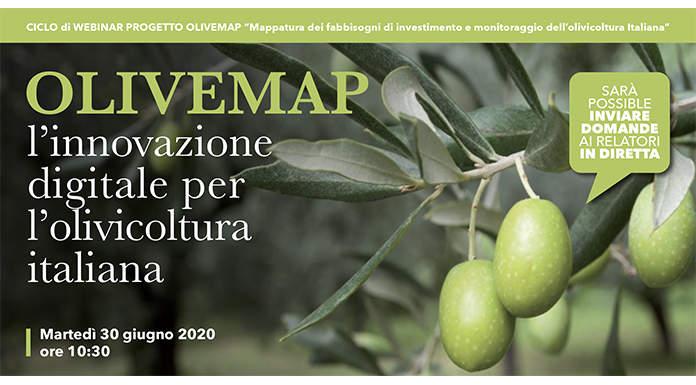 Webinar OLIVEMAP : L'innovazione digitale per l'olivicoltura italiana