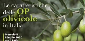 OP olivicole