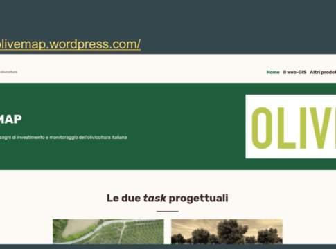crescita dell'olivicoltura
