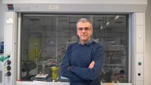 Giuseppe Ciccarella