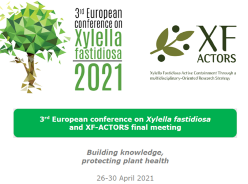 3 conferenza europea xylella