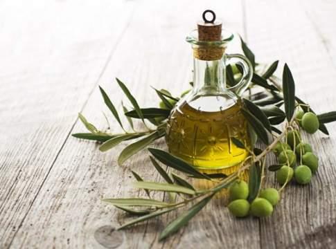 Confagricoltura olivicoltura italiana