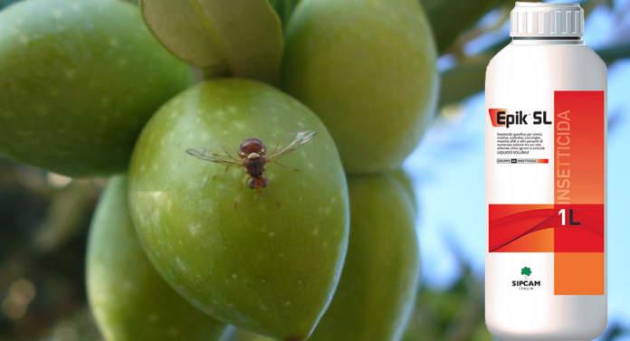 insetticida epik sl