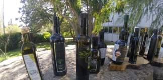 basilicata olio qualità