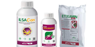 biostimolanti per olivo Ilsa