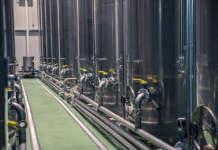 prezzi olio oliva