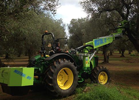 gestione mecanizzata oliveti